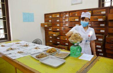 Phòng thuốc và xử lý dược liệu công nghệ cao