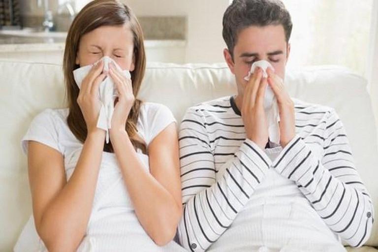 Dấu hiệu của chính của bệnh là ngứa mũi, sổ mũi