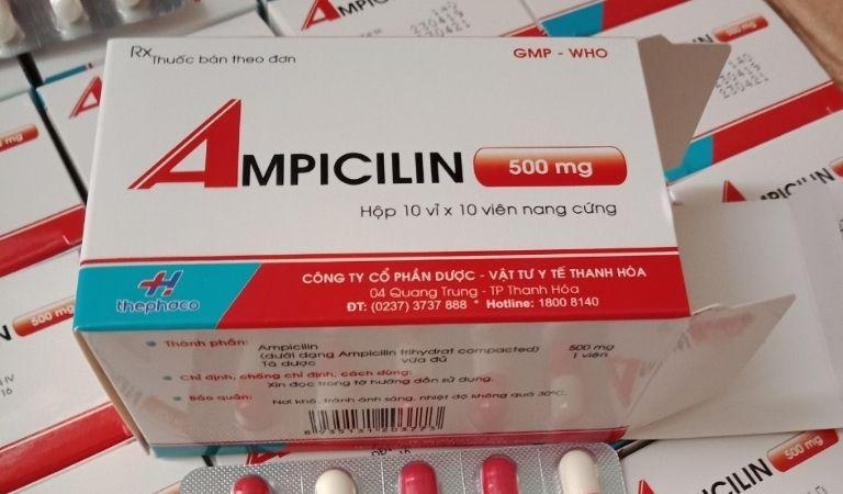 Các loại thuốc Tây y mà người bệnh có thể sử dụng