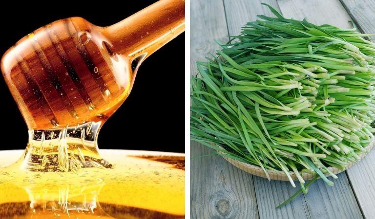Đẩy lùi triệu chứng viêm amidan bằng lá hẹ và mật ong
