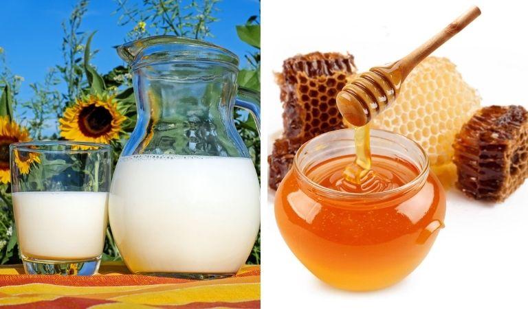 Sữa mật ong đem đến công dụng trị bệnh nhanh chóng