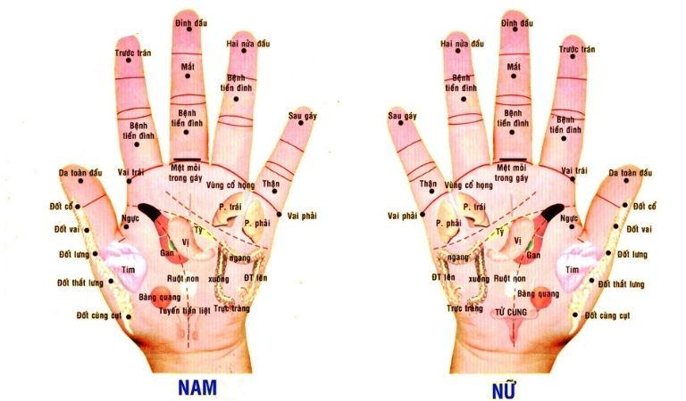 Các cách diện chẩn phù hợp với từng trường hợp bệnh nhân