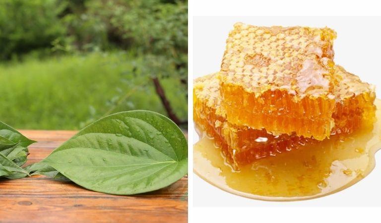 Công thức chữa amidan bằng mật ong và lá trầu không