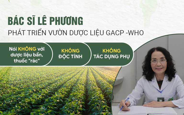 Bác sĩ Lê Phương phát triển nguồn dược liệu sạch, đạt chuẩn GACP - WHO