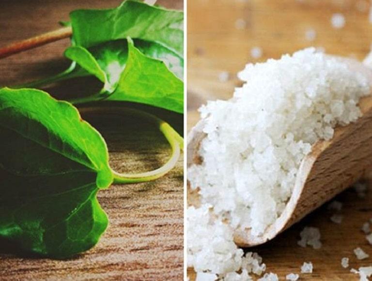 Kết hợp muối ăn và lá diếp cá