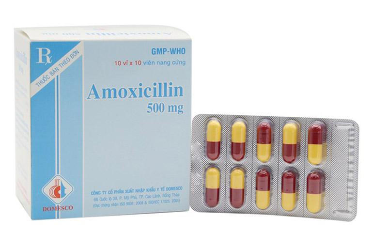 Amoxicilin kháng sinh trị viêm họng hạt