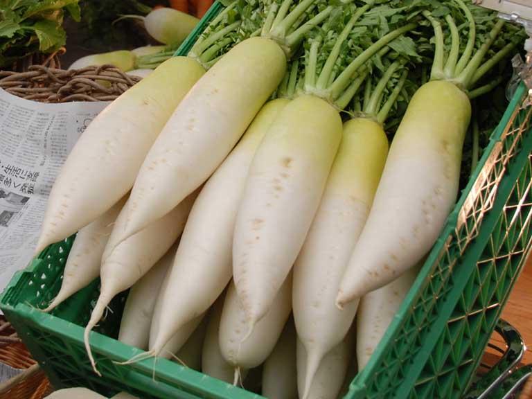 Củ cải trắng là thực phẩm giàu kẽm