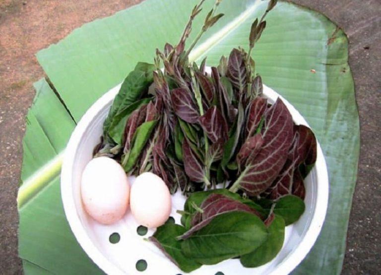 Lá mơ rán với trứng là món ăn dễ làm, mang lại hiệu quả tốt