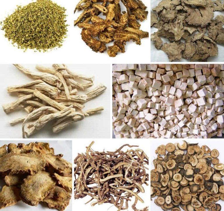 Một số vị thuốc Đông y chữa viêm họng mãn tính
