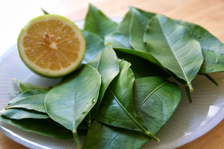 Phương pháp chữa bệnh từ dân gian sử dụng các thảo dược thiên nhiên dễ thực hiện tại nhà