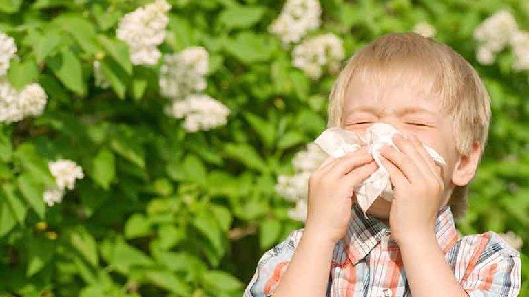 Thời tiết, môi trường, tác nhân gây hại hay tiền sử bệnh hô hấp là những nguyên nhân chính gây bệnh