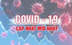 cập nhật covid 19 tại việt nam